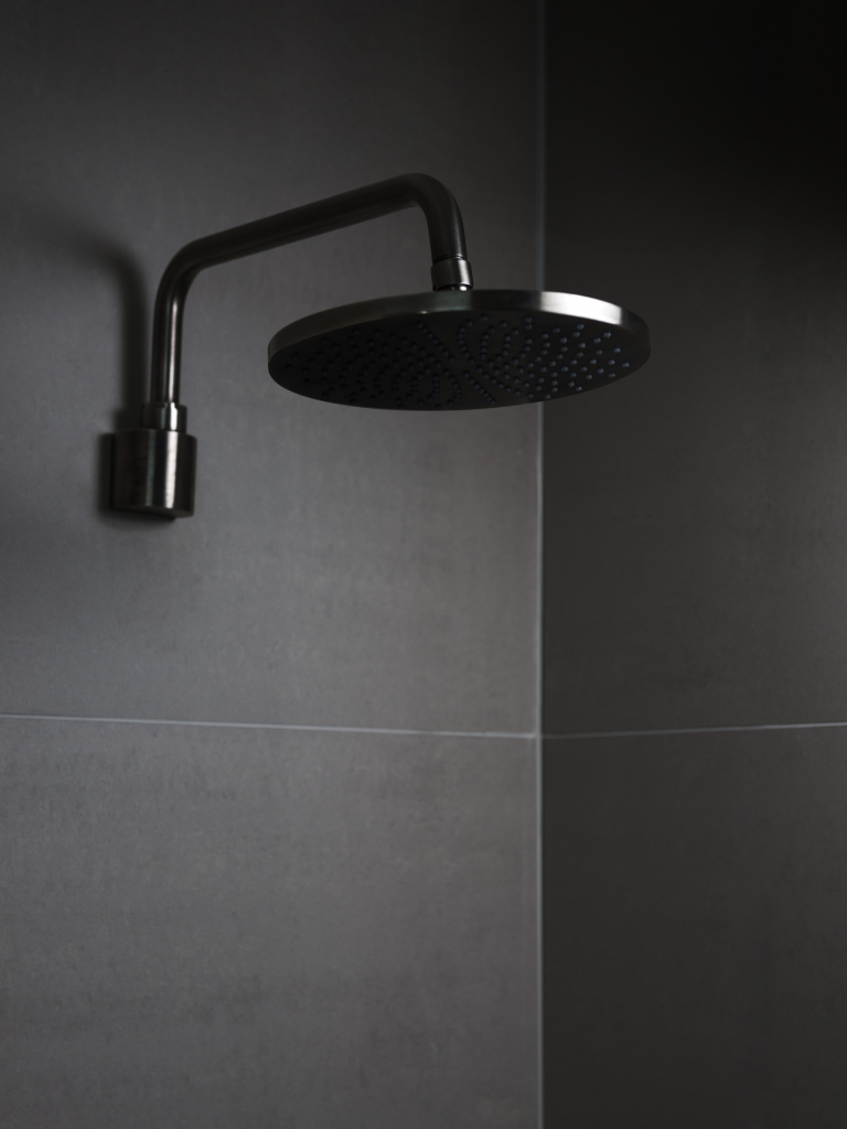 00381PL_ANC49_Ancillaries_Ceiling_Mounted_Shower_Head_in_Black_Mirror